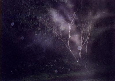nightshot2.jpg